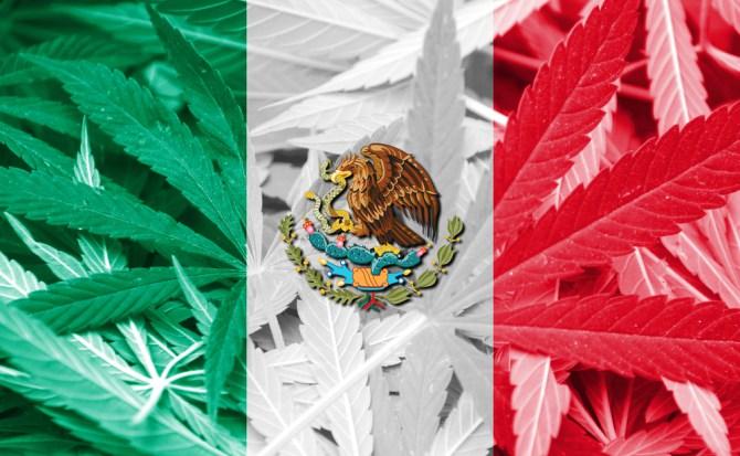 Legalización de la marihuana en sitios turísticos en México